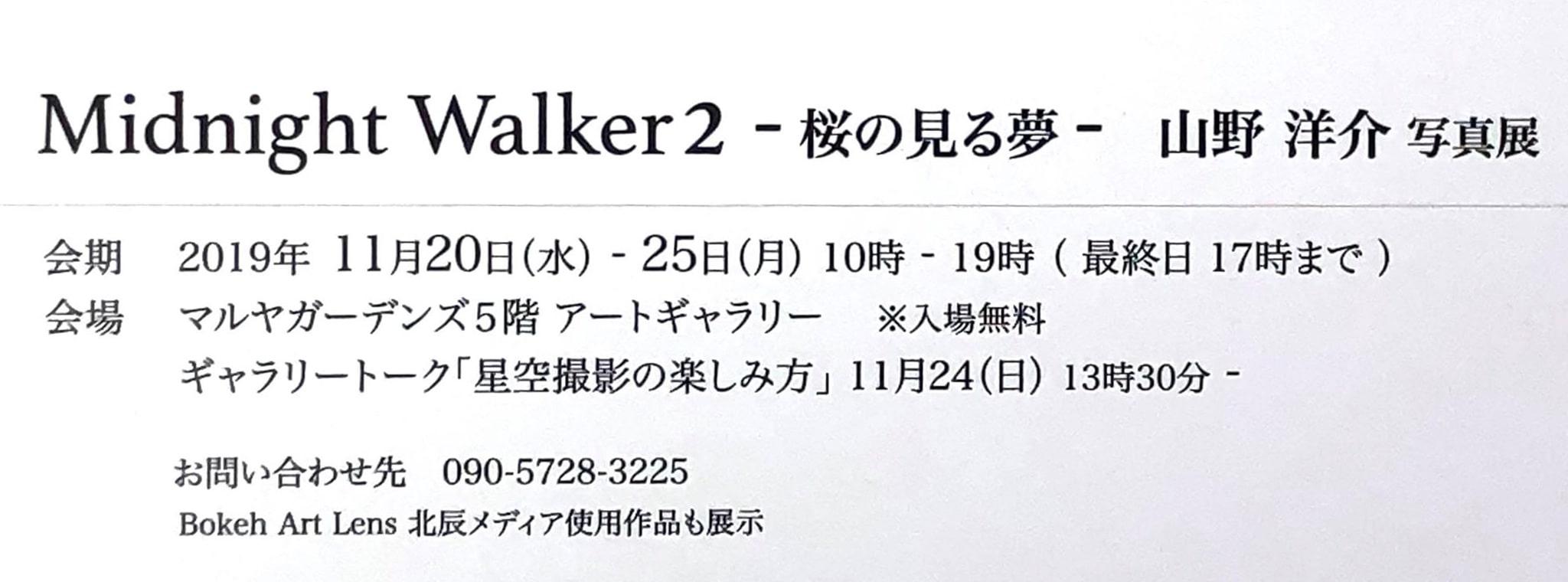 Midnight Walker2 -桜の見る夢- 山野洋介写真展